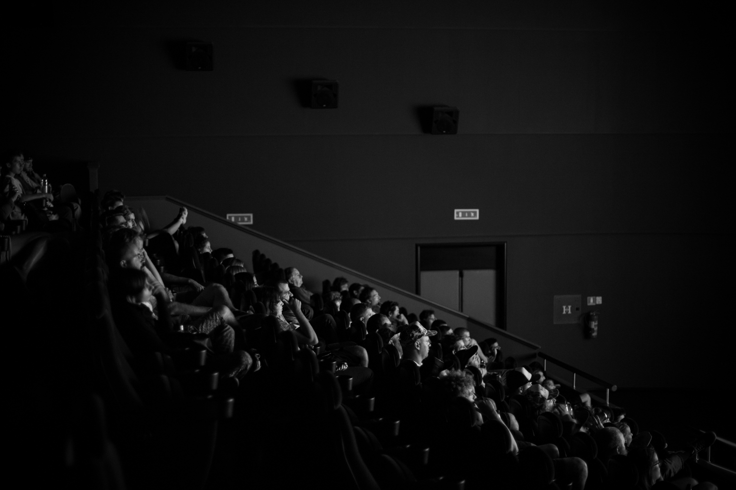 """Danger Dave"" screening @ Kino Valli, Vladimir Film Festival 2015. Ph. : Tomaz Santl"